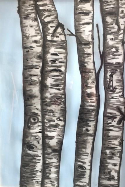 Kimberly DuRoss - Spring Birch Trees